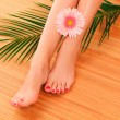 Foto Stock: Female feet