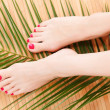 Female feet — Foto de stock #11890629