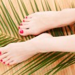 Stock Photo: Female feet