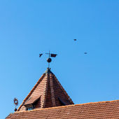 Crows flying above tiled roof of castle in Mir, Belarus. — Stock Photo