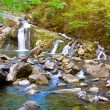 Mountain river with a small waterfall — Stock Photo #10911534