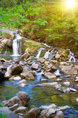 Mountain river with a small waterfall — Stock Photo