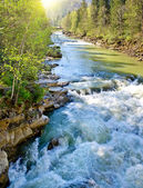 Turbulent mountain river in the spring — Stock Photo