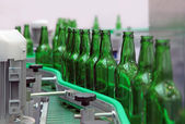 Glass bottles for beer — Stock Photo