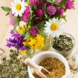 Mortar with healing herbs, bouquet of daisy and clovers on woode - Stock Photo
