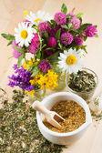 Mortaio con erbe curative, bouquet di daisy e trifogli sul woode — Foto Stock