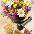 Mortar with healing herbs and flowers, alternative medicine — Stock Photo