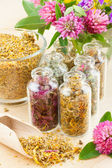Different healing herbs in glass bottles, flowers bouquet, herbal — Stock Photo