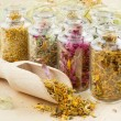 Healing herbs in glass bottles, herbal medicine — Stock Photo #11166495