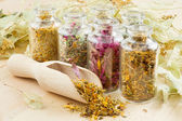Healing herbs in glass bottles, herbal medicine — Stock Photo