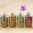 Healing herbs in glass bottles, herbal medicine — Stock Photo #12229739