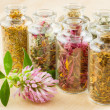 Healing herbs in glass bottles, herbal medicine — Stock Photo #12229757