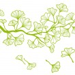 Ginkgo branch with leaves, vector — Stok Vektör