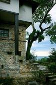 House in botanical garden — Stock Photo