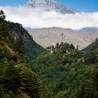 Himalaya mountains Landscape: peak, stream and forest — Stock Photo