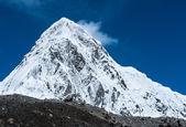 Snowed Pumori summit in Himalaya — Stock Photo