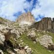 Dolomites on summer - Catinaccio group — Stock Photo