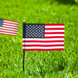 Two small american flags — Stock Photo