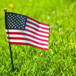 American flag on the grass — Stock Photo