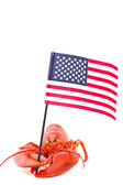 Lobster with american flag — Stock Photo