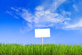 Blank white sing on neatly trimmed green grass against a blue cl — Stock Photo