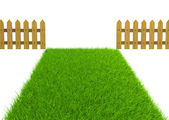 Green field and wooden fence — Stock Photo