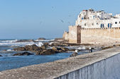 Defensive walls of Essaouira, Morocco — Stock Photo