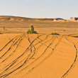 Tracks on Erg Chebbi at Morocco — Foto de Stock