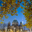Berliner Dom (Berlin Cathedral) in Berlin, Germany — Stock Photo #11479918