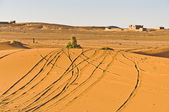 Tracks on Erg Chebbi at Morocco — Stock Photo