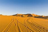 Tracks on Erg Chebbi at Morocco — Stock Photo