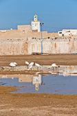 крепость mazagan в эль jadidia, марокко — Стоковое фото