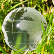 Glass globe in the grass — Stock Photo