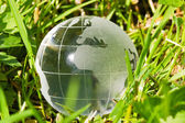 Glass globe in the grass — Stock Photo