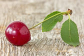 Cherry with leaf — 图库照片