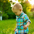 Summer portrait of beautiful baby boy on a grass — Stock Photo