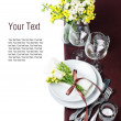 Festive table setting in brown, template — Stock Photo #11464225