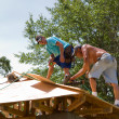 Stock Photo: Carpenters Nailing Plywood