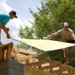 Carpenters With Plywood — Stock Photo