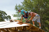 Carpenters Nailing Plywood — Stock Photo