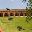 Fort Pulaski Canons — Stock Photo #11956825