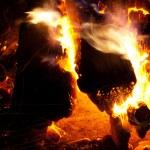 Burning campfire — Stock Photo