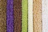 Some carpet samples — Stock Photo