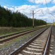 Railway with electric cables - Stock Photo