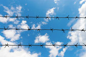 The other side of barbed wire — Stock Photo