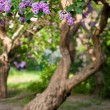 Bunch of violet lilac flower (shallow DOF) — Stockfoto #11457289