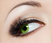 Primer plano del ojo womanish hermoso — Foto de Stock