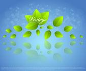 Fresh green leaves and sun shine for summer design — Stock Vector