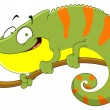 Stock Vector: Chameleon