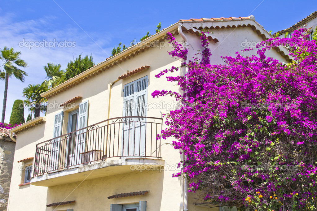 House full of flowers — Stock Photo #11267780